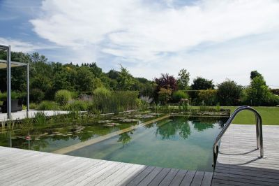 Nominee JOHN: Wellness garden with Natural Pool
