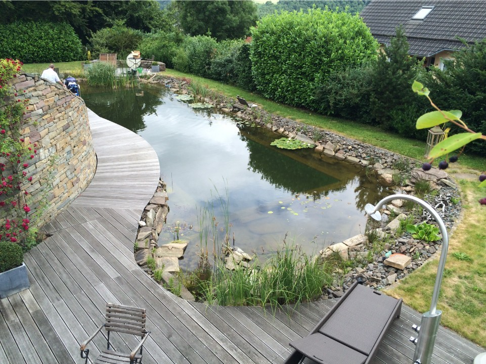 a-natural-pool-turned-living-pool-04