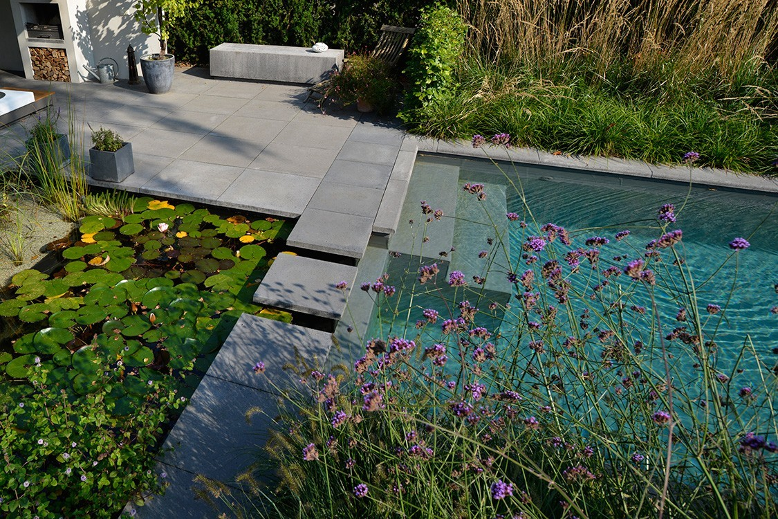 Bio Pool in the Netherlanfs with solar panels
