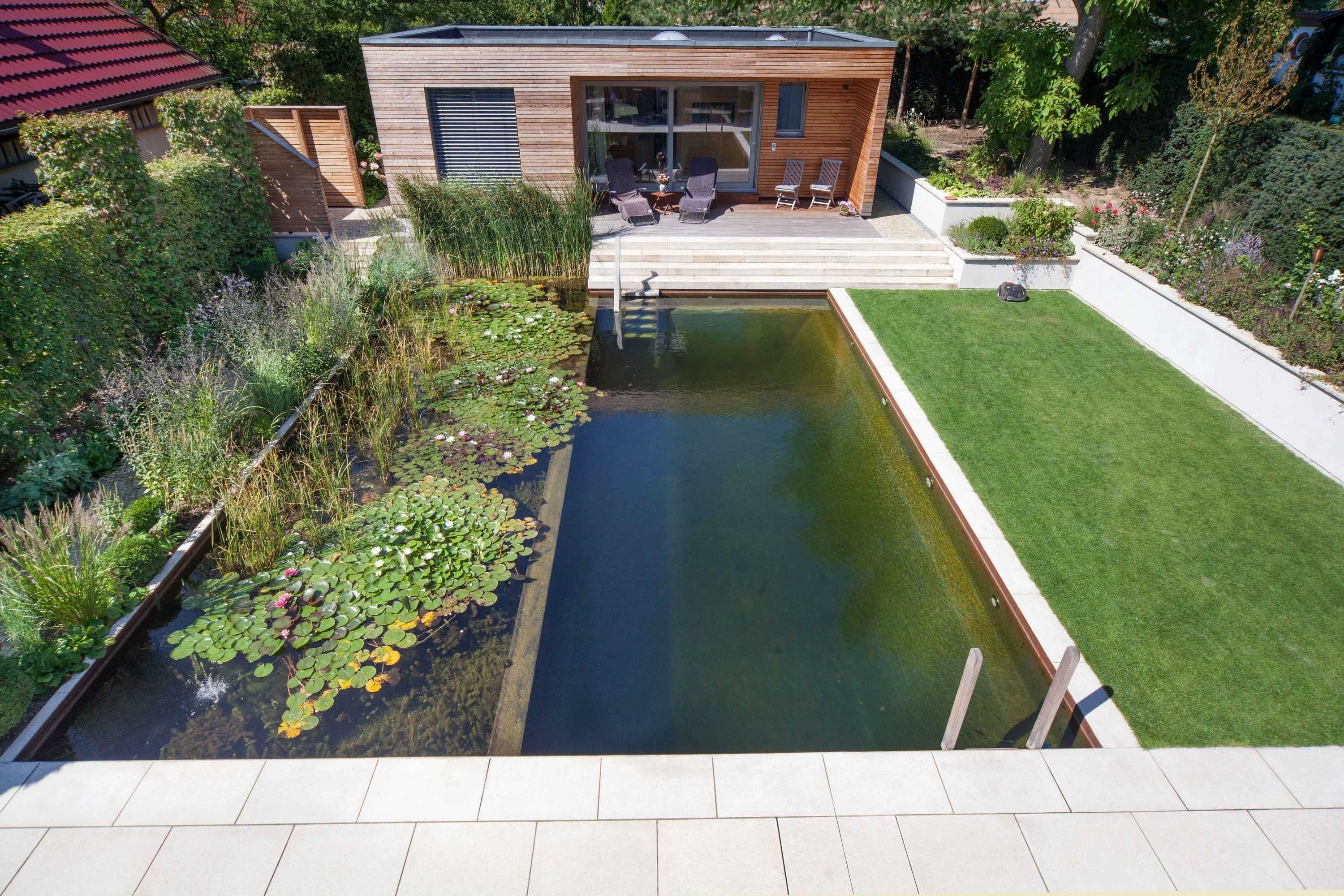 harmonious-unit-of-newly-built-house-and-natural-pool