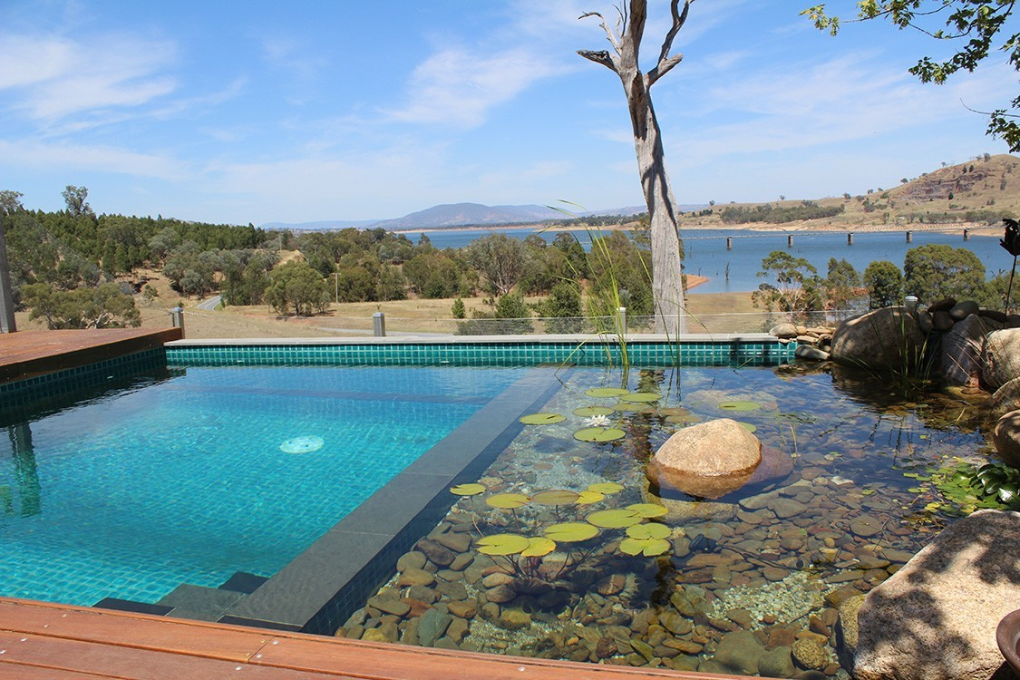 Biotop natural plunge pool in down under for Pond swimming pool