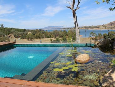Biotop case studies i natural pools and living pools for Natural swimming pool australia