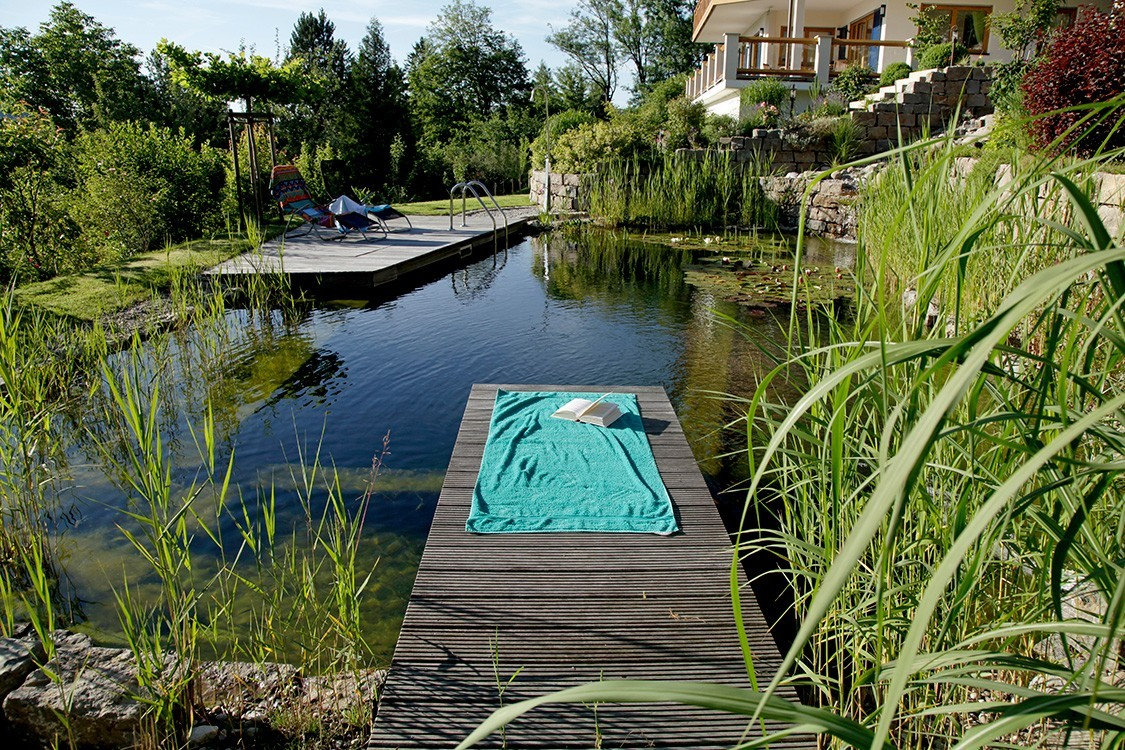 BIOTOP - Natural Pool on a Steep Slope