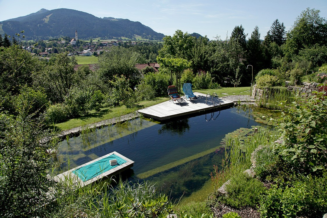Biotop natural pool on a steep slope for Pool design on a slope