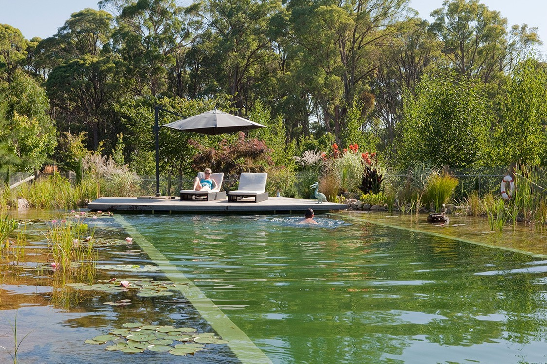 Biotop pond and pool for an australian b b for Natural swimming pool australia