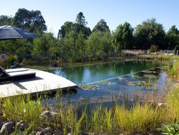 natural pool for B&B in Australia