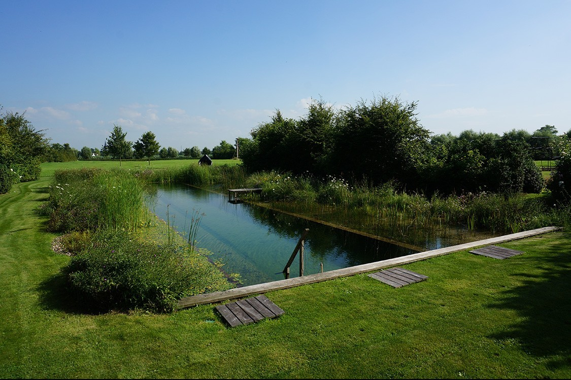 natural pool  in Belgium  in clear  and plain design