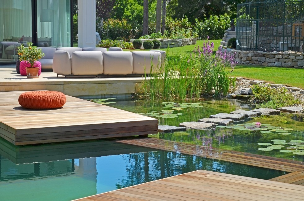 natural pool exclusive design in Vienna
