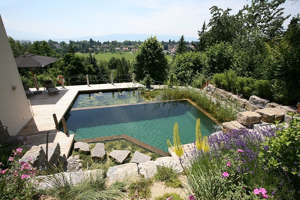 Biotop natural pool on a very steep slope - Building a swimming pool on a slope ...