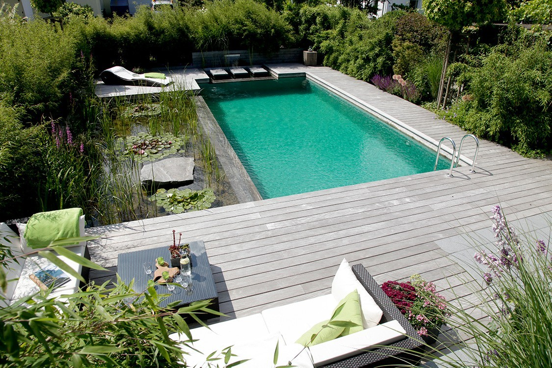 natural pool with sun deck