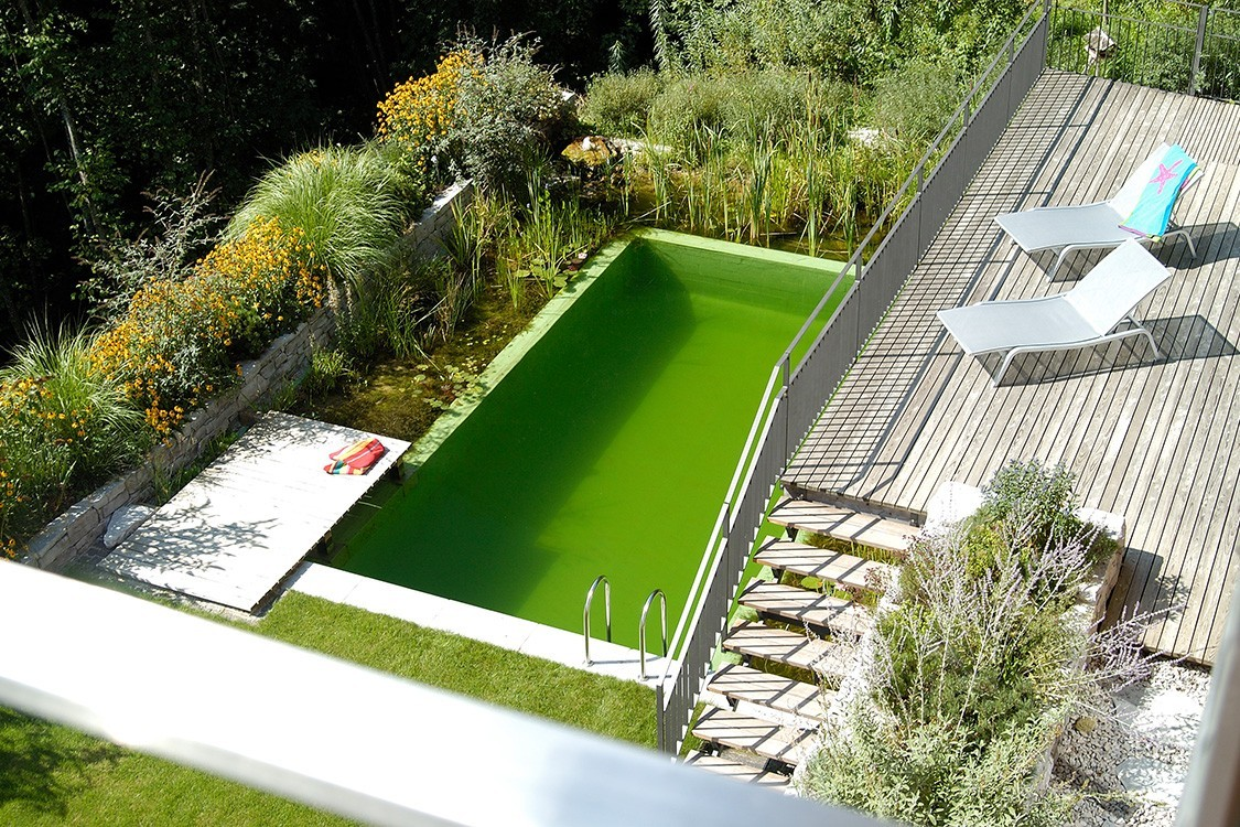 natural pool in germany on ground level