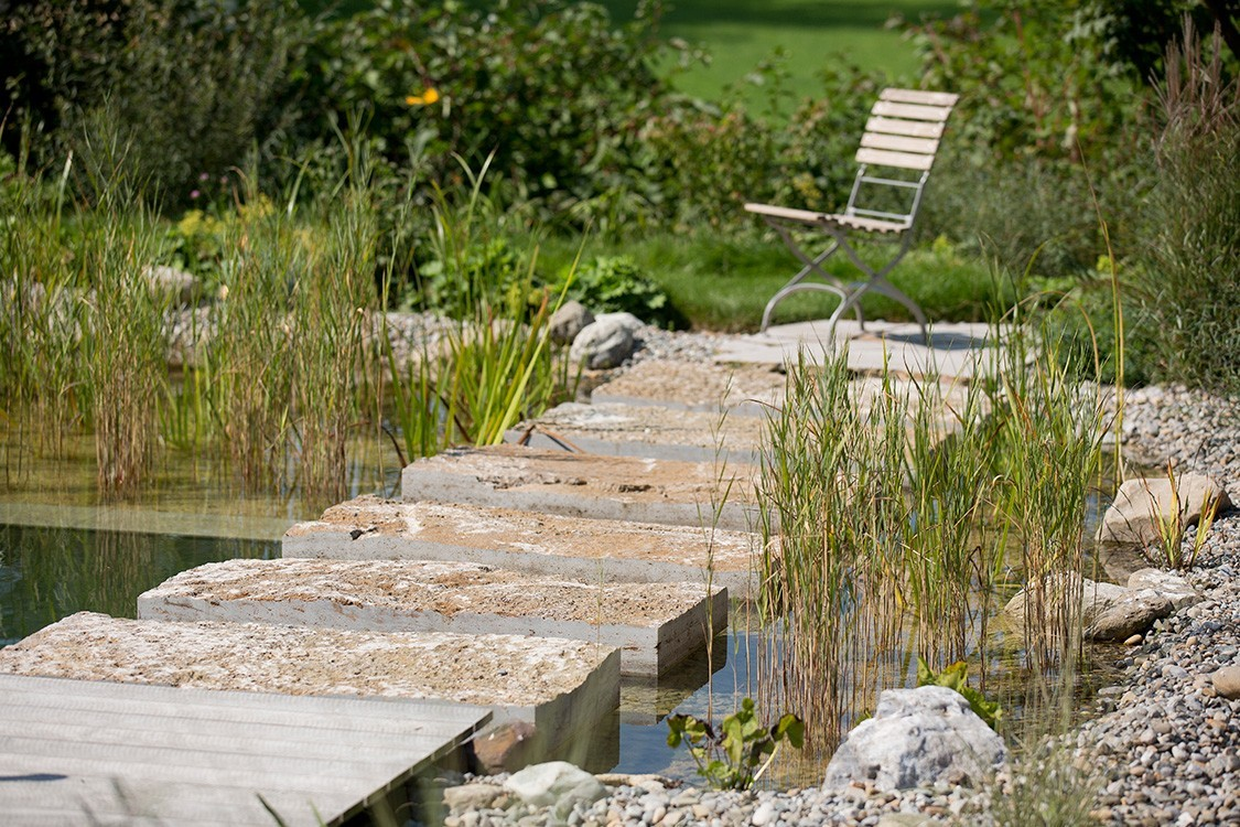 natural pool in traditional and modern design