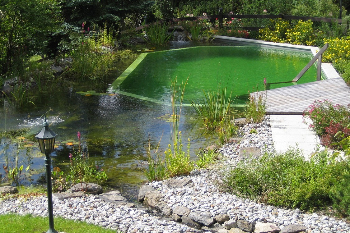 natural pool for five star hotel in Switzerland