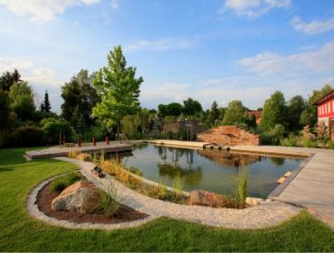 natural-pool-in-a-farmhouse-style-garden