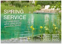 Natural Pool Spring Service