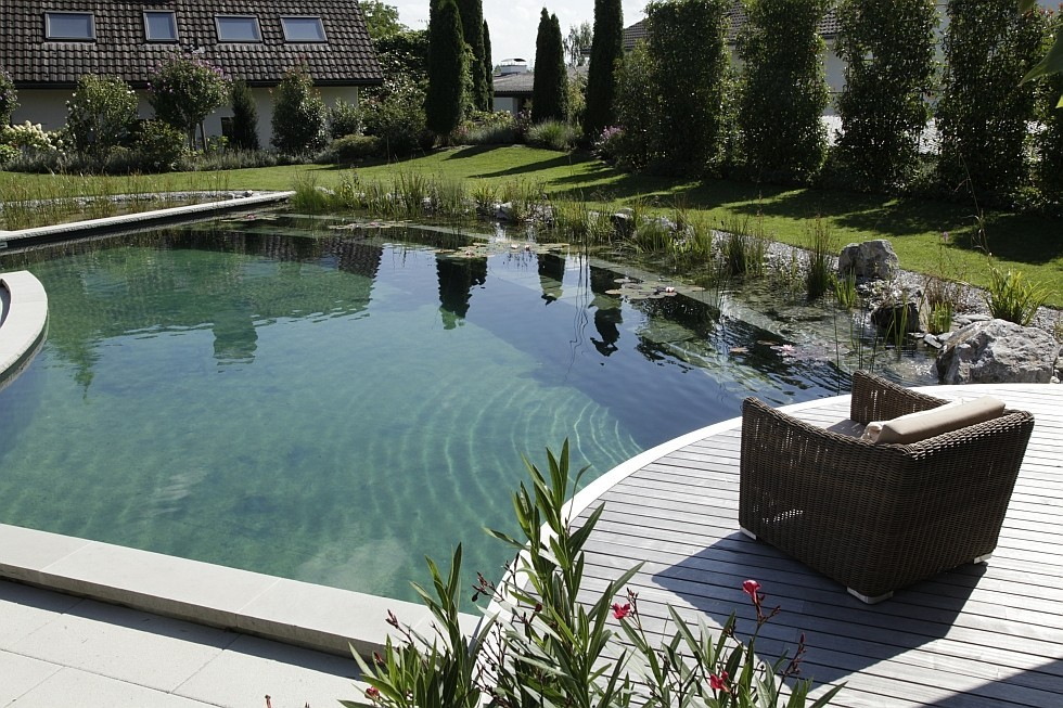 Natural Pool in Switzerland with Unconventional Design Ideas