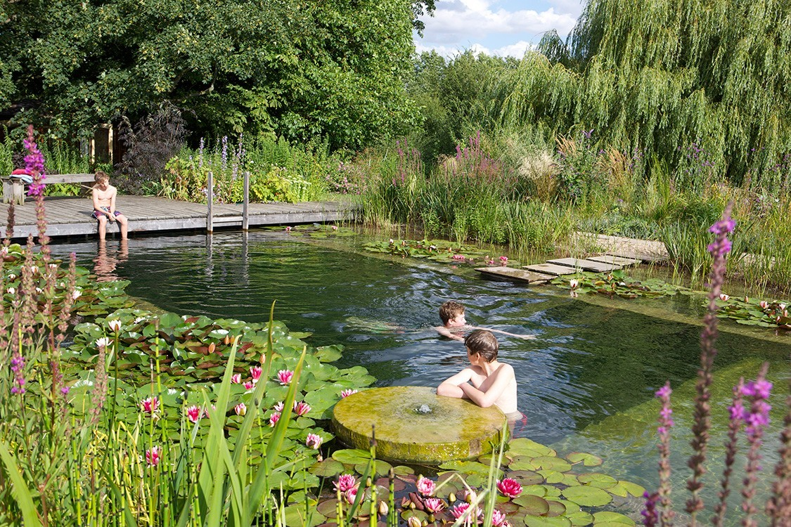 Natural Pool in UK  beneath weeping willow