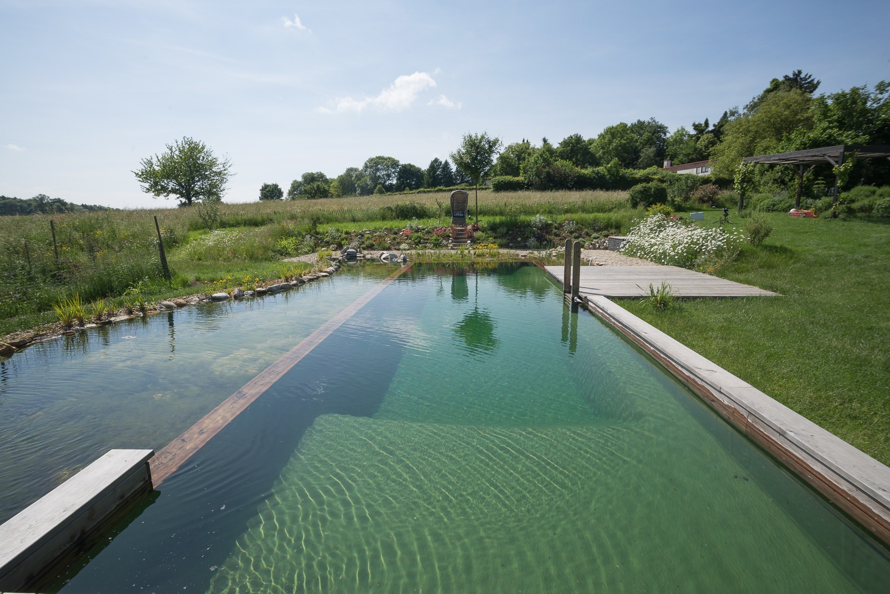 "A Natural Pool with a view of the ""Vienna Woods"""