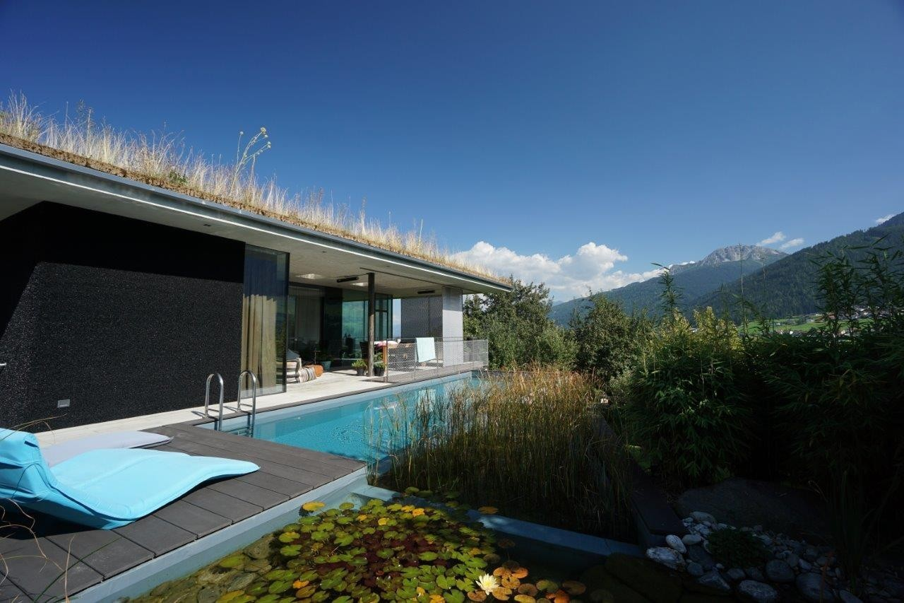 pool-with-extraspace-for-flora-and-fauna