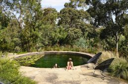 Natural self-filtering backyard pool - Photo: Derek Swalwell