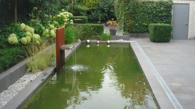 Transforming a Chlorine Pool into a Living Pool