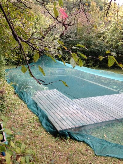 prevent leaves from falling into the pool