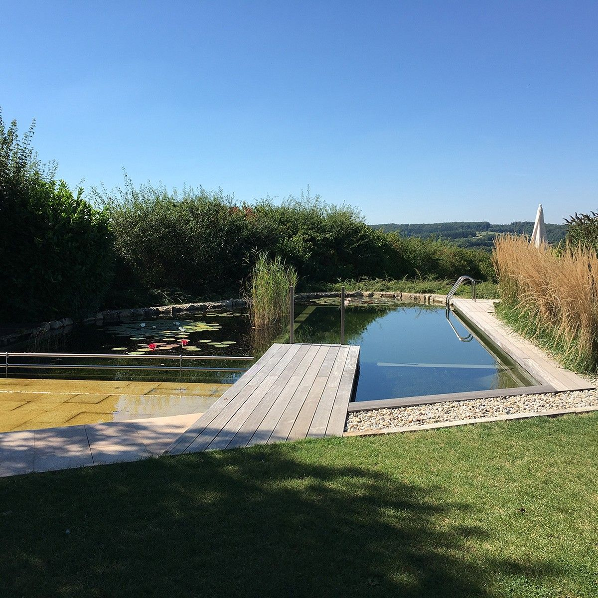 BIOTOP - News I Natural Pools and Living Pools - The winners of ...